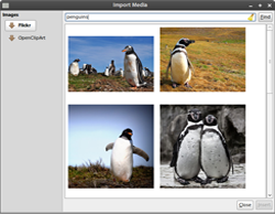 Download Images from Flickr and other webpages