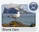 Click here to view the Shore Cam