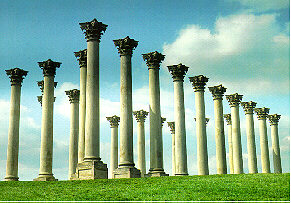 picture of the columns from the field
