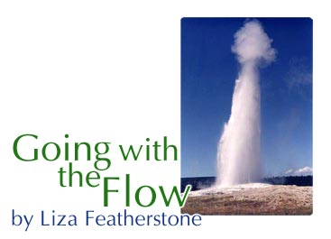 Going with the Flow by Liza Featherstone