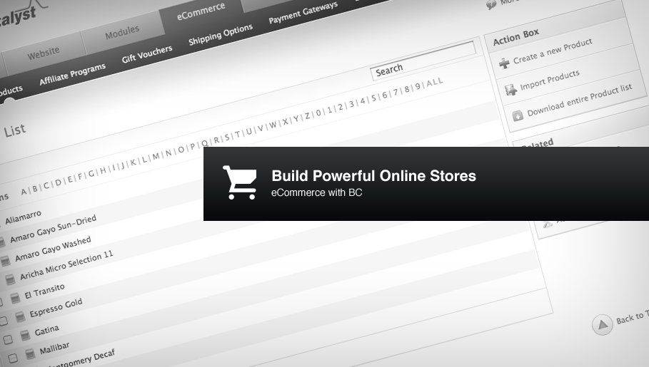 Building Powerful Online Stores
