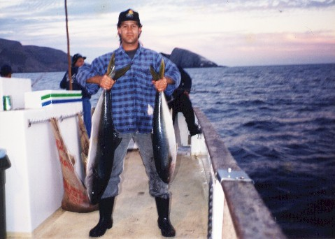 Big Yellowtail From Santa Barbara Island