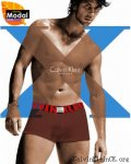 Calvin Klein X Cotton Trunk U8829 Red/Brown