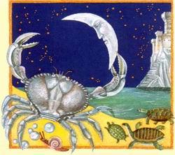 yengeç burcu, yengeç erkeği, yengeç erkeğinin yıldıznamesi, aşk, para, gelecek, fal, burç, burçlar, yıldızname, astroloji