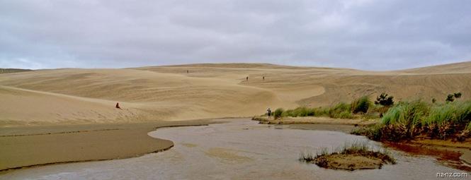 дюны недалеко от Ninety Mile Beach
