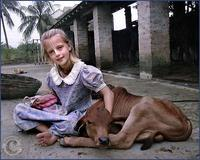 hare krishna girl with calf: