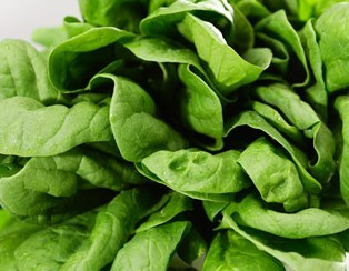 spinach 2: