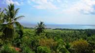 Hispaniola ist nach Kuba die zweitgrößte karibische Insel. Die beiden Länder Haiti und Dominikanische Republik teilen sich die Landfläche von 76.480km². Sie liegt ungefähr 90km östlich von Kuba. Mit mehr...