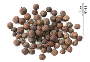 allspice seeds: