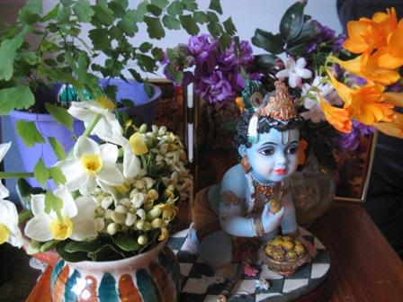flower bearing spring:
