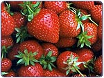 strawberries thumb 3: