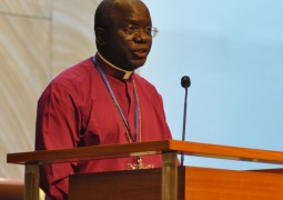 Installation of Central Africa Primate announced