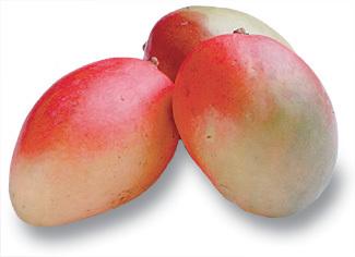 mangoes:
