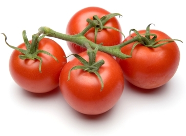 fresh and ripe tomatoes: