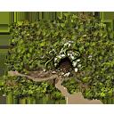 Woods Inactive