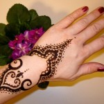 Dark And Light Colour Mehndi Design 8