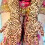 Dark And Light Colour Mehndi Design 9