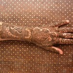 Dark And Light Colour Mehndi Design 6
