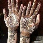 Dark And Light Colour Mehndi Design 3