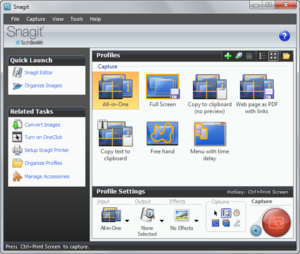 Snagit Screenshot under Windows