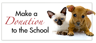 Make a Donation to the School
