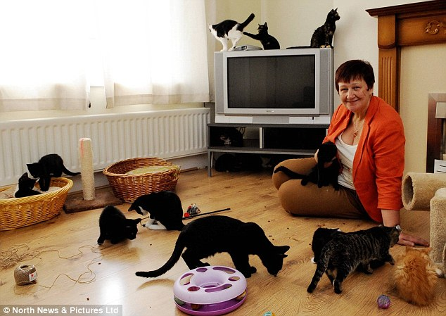 Warning: Sue Hardy, the animal charity's co-founder, has admitted it may have to start turning cats away