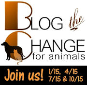 Blog the Change