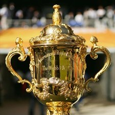 IRB confirms record RWC bid response