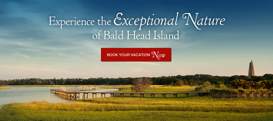 Experience the Exceptional Nature of Bald Head Island