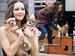 Katherine McPhee teaches her pet pooches how to climb the steps to her trailer