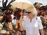 Camilla, who has never visited the country, grins as she strolls past the colourful topless women dancing