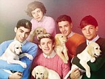 They call it puppy love: One Direction pose for a tongue-in-cheek 1970s-style shoot for Wonderland magazine as they each carry a labrador