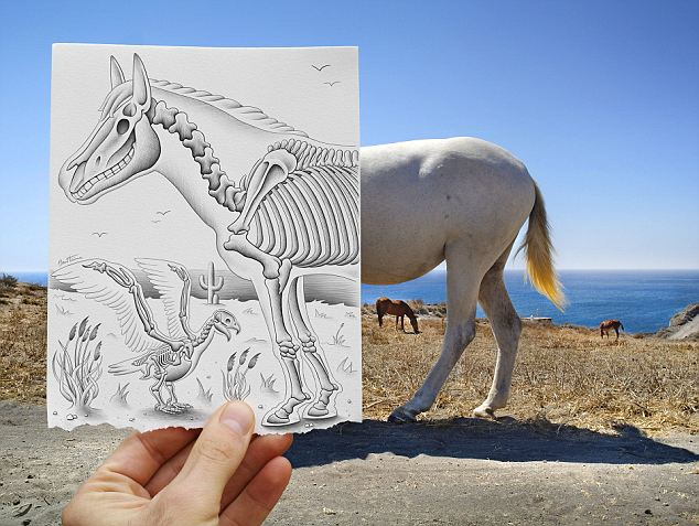 X-ray effect: A horse becomes half see-through in this picture, which is part of artist Ben Heine's Pencil Vs Camera series