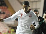 Possibility: England lost out to Israel in their bid to host Euro 2013