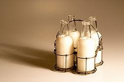 Die besondere Bank – die Milchbank