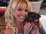 'My new little baby girl': Britney Spears tweeted a picture of herself and her new puppy Hannah, who already has her own Twitter page, on Monday