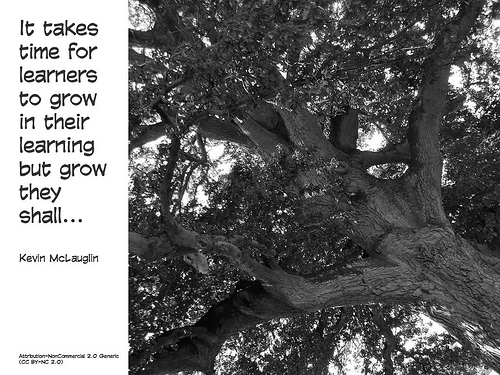 It takes time for learners to grow
