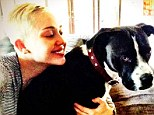 'Feels good to smile again': Miley Cyrus tweeted a picture of herself with dog Mary Jane - suggesting she is trying to move on from the death of her Yorkshire Terrier Lila