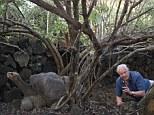David Attenborough meets Lonesome George