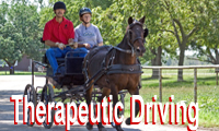 Therapeutic Driving