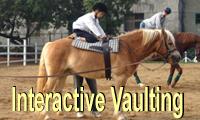 Interactive Vaulting