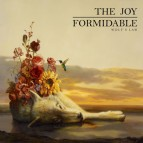 The-Joy-Formidable---Wolf's