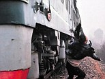 Close call: Xiao Li, 20, is sent flying as she is hit by a 90mph express train while posing for pictures