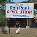 New Ron Paul chicken coop.