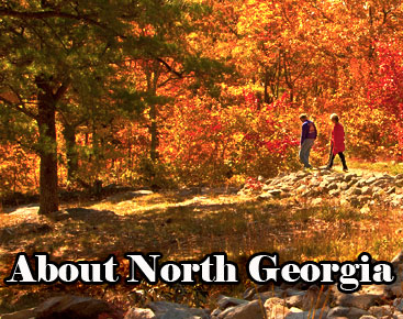 About North Georgia