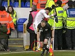 Incident: The linesman holds the banana thrown at Gareth Bale as he went to take the corner