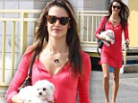No rest for the beautiful: Alessandra's legs were shown off to perfection in a hot pink dress