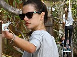 A fruity new hobby! Alessandra Ambrosio picks lemons with the help of delighted daughter Anja