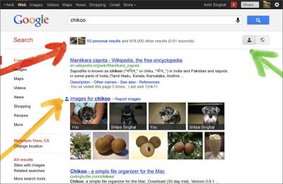 Google+ search result Amit Singhal Chikoo