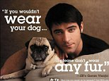 Criticism: PETA, well-known for its hard-hitting adverts such as the one pictured, has come under fire for the number of animals it kills at its shelter in Norfolk, Virginia.